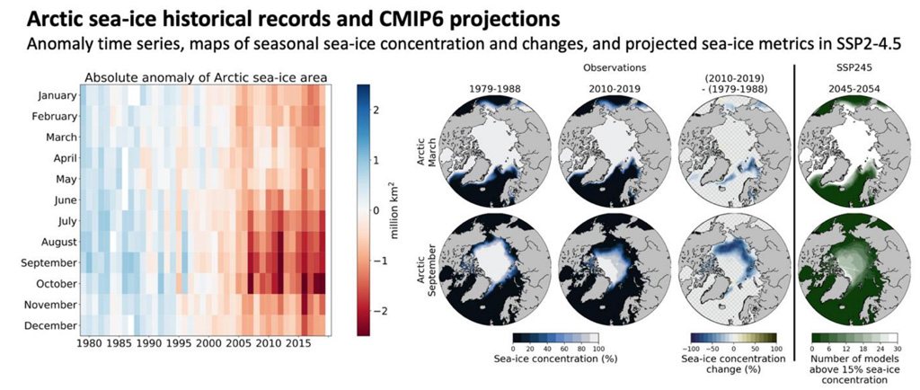 Observations of Arctic sea ice concentration and projected changes under SSP2-4.5 IPCC